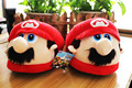 Super Mario Bros Green Luigi Plush Shoes Home House Winter Indoor Warm Slippers For Adult cosplay