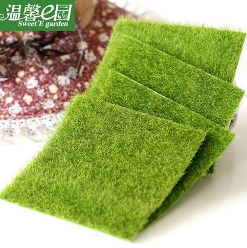 hermoso unid mini musgo paisaje micro emulacin de plantas suculentas decoracin ecolgica jardn de csped
