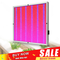 200W LED Grow Light Fitolamp 1715Red:294Blue Growing Panel LED Lamp for Indoor Plant Flower Hydroponics Grow Tent Greenhouse
