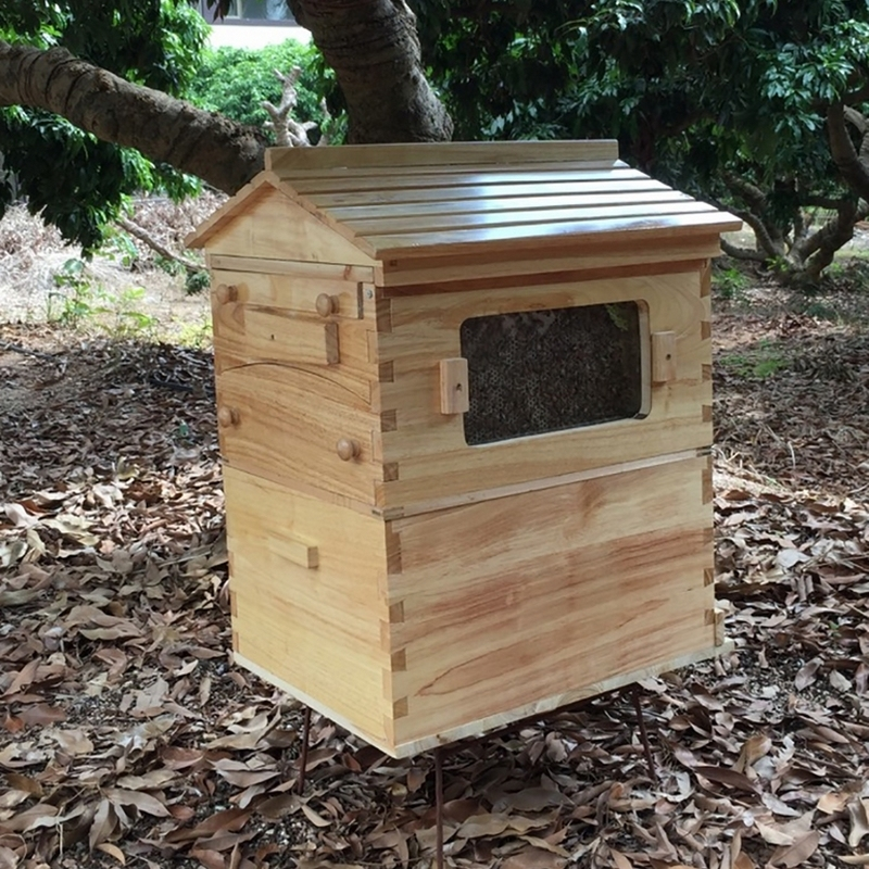 Upgraded Beekeeping Wooden House Box W// 7PCS Auto Move Honey Beehive Frames US