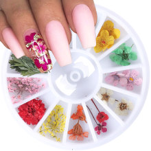 1 Wheel Dried Flowers Nail Art Decoration 3D Natural Artificial Leaf Floral Charms Necklace Jewelry DIY Accessories Tips JIF10(China)