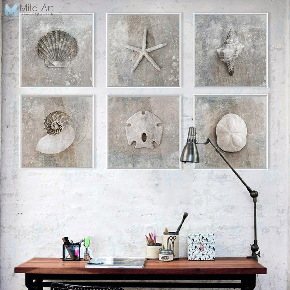 Buy 6 grey vintage sea shell photo for Rustic home decor suppliers