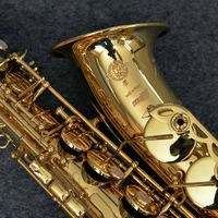 New French Alto Saxophone 803 Gold Lacquer Intermediate Saxophone Alto SERIE III Musical Instruments Professional Included Case