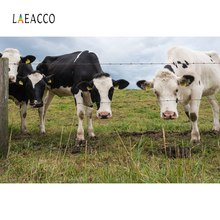 цены Laeacco Photo Backgrounds Farm Grassland Cow Blue Sky Wallpaper Natural Scenic Photography Backdrops For Photo Studio