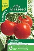 Marseed Non Hybrid 100 Tomato Vegetable Seeds Impressive Rustic Garden