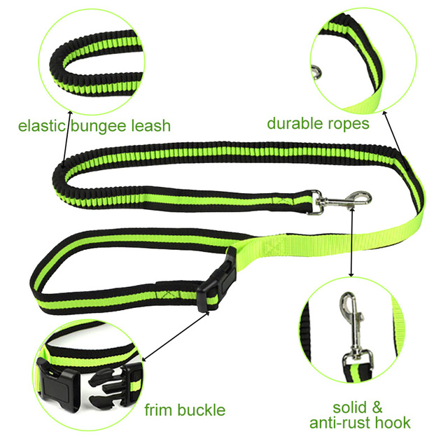 Adjustable Bungee Hands-Free Running Leash