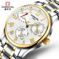 Suíça carnaval marca de luxo masculino relógios automático auto vento relógio masculino safira reloj hombre relogio relógio C8773G 3 Relógios mecânicos     -