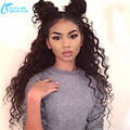 Brazilian Virgin Hair Curly Wig For Black Women Glueless Full Lace Human Hair Wigs, Deep Curl Lace Front Human Hair Wigs