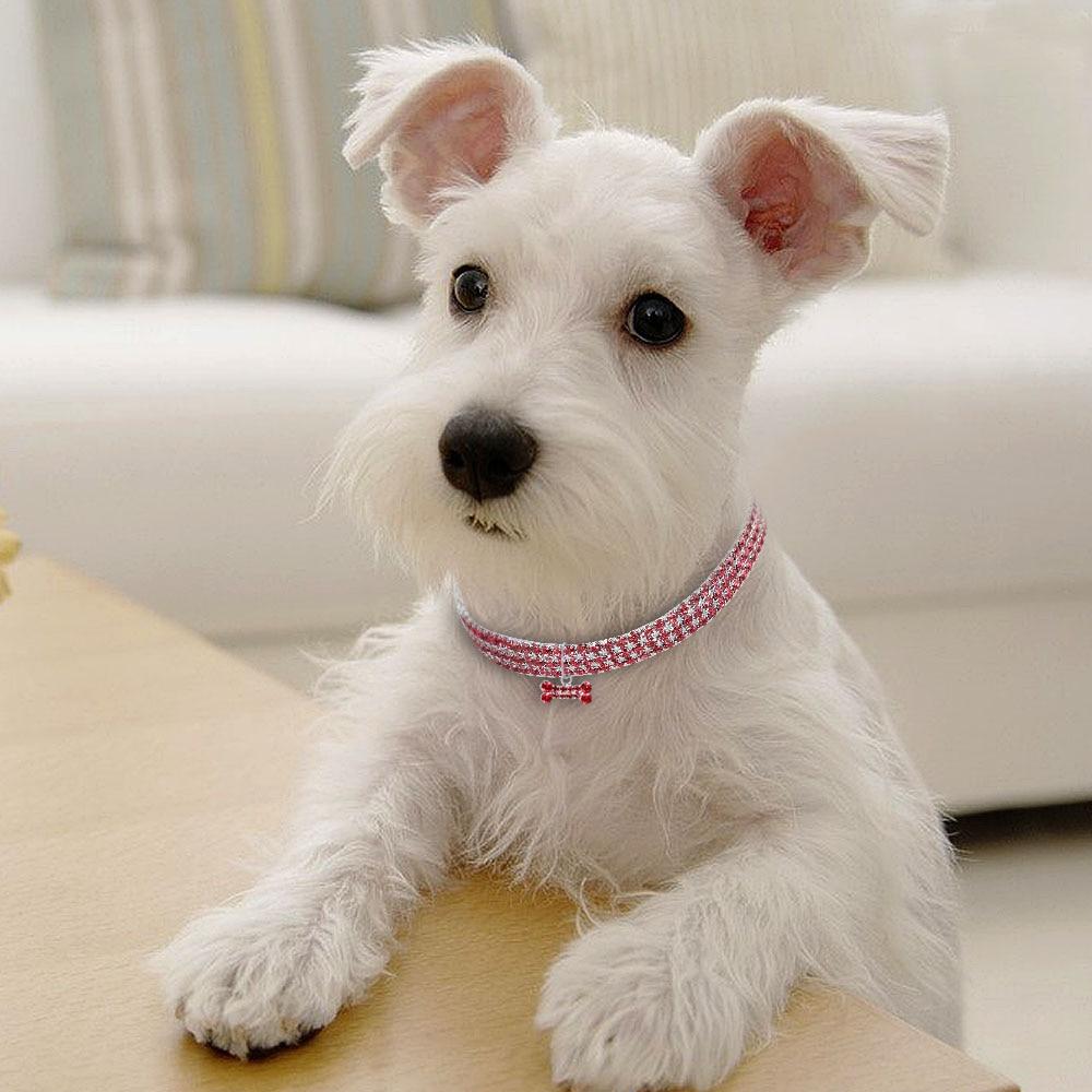 Comfortable Fashion Bling Dog Cat Jewelry Rhinestone Collar