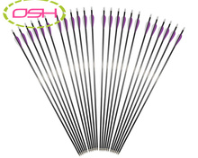 100 Pcs Replaceable Arrowheads Hunting Shooting Carbon Arrows Purple white feather Target Practice Broadheads for Recurve Bow