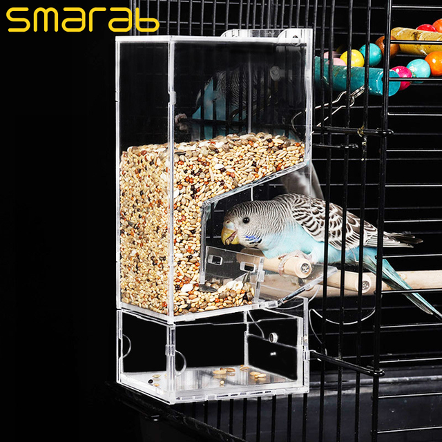 Bird Feeder Automatic Feeding Bird Food Containers Starling Tiger Peony Cockatiels Bird Pigeon Supplies Plastic Adhere To Fly