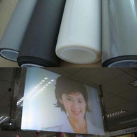 Self Adhesive Holographic Rear Projection Screen Material Window Film With A4 Size Light Grey Color