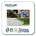 100% Polvo de La Hormona de la Muda Natural/Ecdysone 95%/Arachnoides Cyanotis PE venta caliente