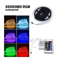 Free shipping 5M Double Row 5050 Waterproof RGB LED Strip 600LEDs 120LEDs/M + 24Key Remote Controller + 12V Adapter