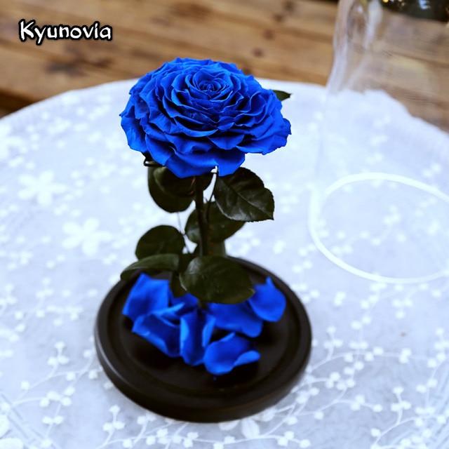 Us 1087 Kyunovia Rosso Belle Rose In Vetro Bella E La Bestia Rose Conservato Fiore Eterno Ky92 Speciale San Valentino Regalo Romantico In Kyunovia