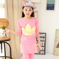 Kids' Girls Clothing Set Sports Set 2 Pcs Long-sleeve Pullover Sweatshirts + Pants Skirt 1190