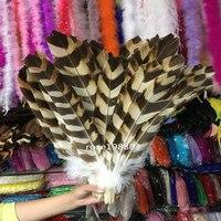 Wholesale! 100 pcs Rare Lady Amherst Pheasant feathers 18 20 inches / 45 50cm