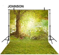 5x7ft Cinderella Enchanted Forest Forest Tree Green Grass Forest Backgrounds Vinyl Cloth Computer Print Children Kids