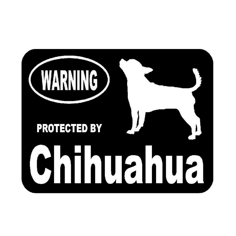 10.2cm*7.6cm Creative Fashion By Chihuahua Protected Animal Vinyl Car Stickers C5-1920