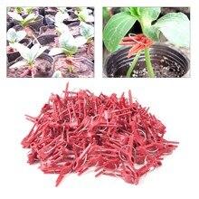 Новое поступление стильные 100 шт прочные пластиковые зажимы для прививки садовый растительный цветок томатная лоза кусты растения