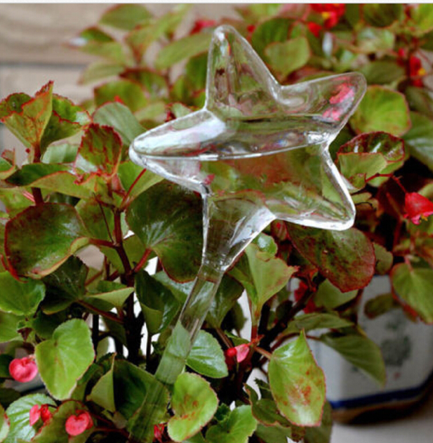Стеклянные растения, цветы, кормушка для воды, самополивающаяся птица, дизайн, растение, водонагреватель, 6 видов - Цвет: as picture shown1