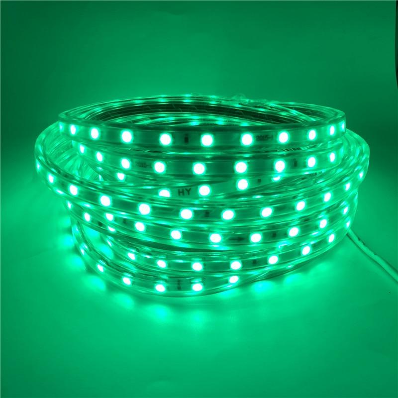 60LEDs/m 220V 5050 LED Strip IP67 Waterproof Flexible Strip Tape Include EU Plug White/Warm White/Red/Green/Blue