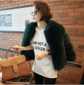 Woman's Fur Coat Green Fox Fur Coat Short Paragraph Korean-Style Private Customized