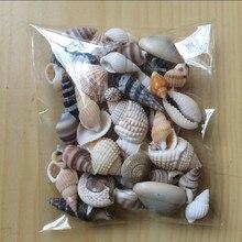 HappyKiss 1 набор смешанных ракушек для аквариума, морских декораций, натуральные мини-раковины для средиземноморья