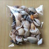 HappyKiss 1 Lot Of Funny Mixed Sea Shells Shell Craft Aquarium Nautical Decor Ornaments natural mini conch mediterranean