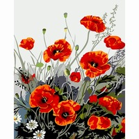 Red Poppies Flowers New Frame Pictures Painting By Numbers DIY Digital Oil Painting On Canvas Home
