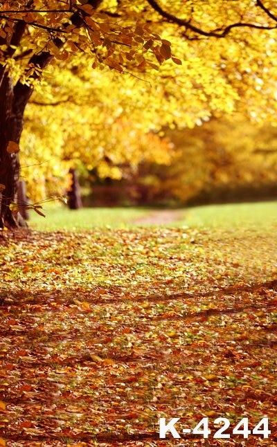 Autumn Yellow Leaves Falling Künstlerische Konzeption Adult / - Kamera und Foto
