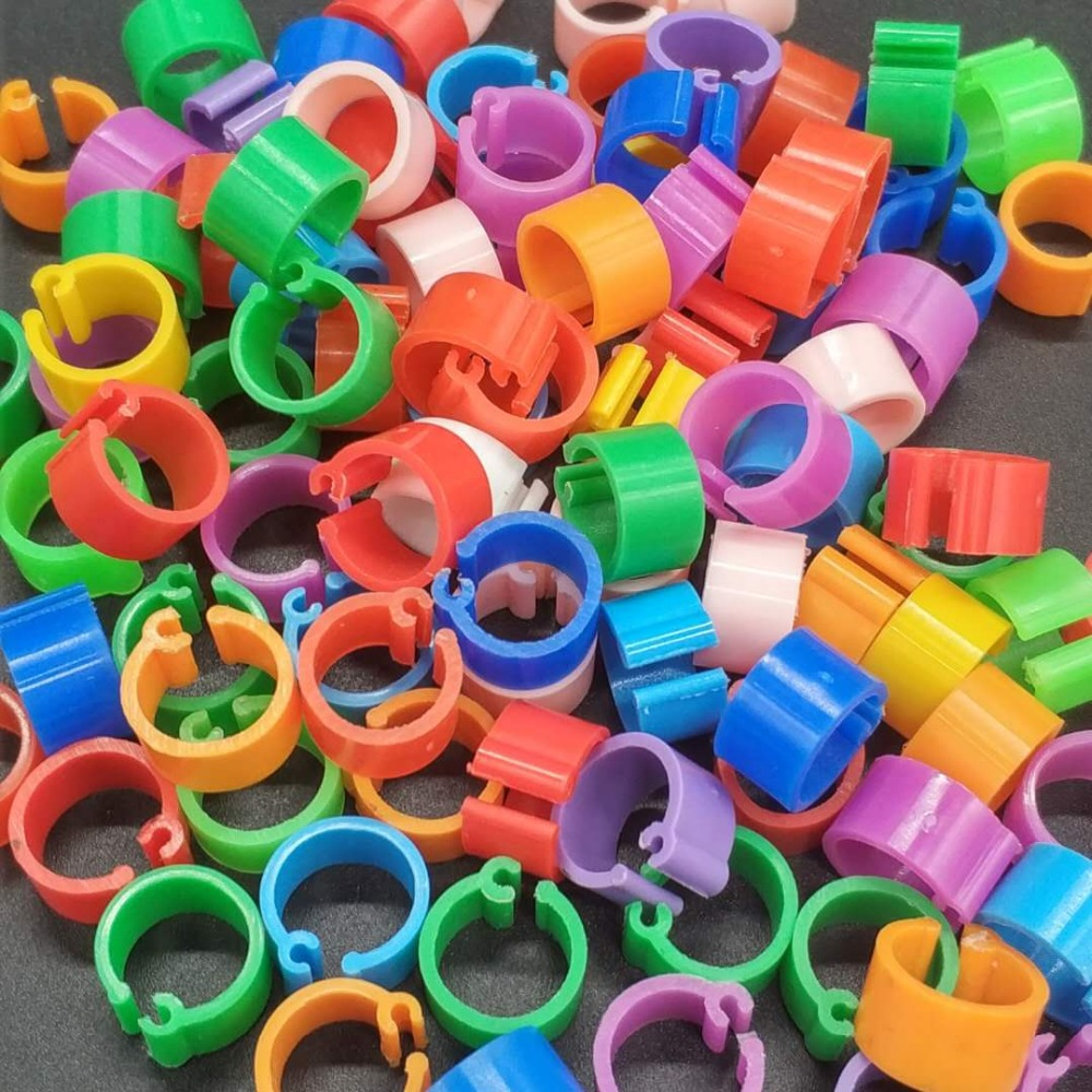 100 Pcs Racing Pigeon Leg Ring Band Tag Clip with Place Name /& Number Red