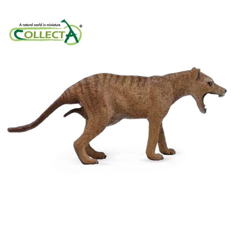 CollectA Thylacine Tasmanian Tiger Classic Toys For Children Boys Animal Model 88767 tasmanian tiger note book pocket