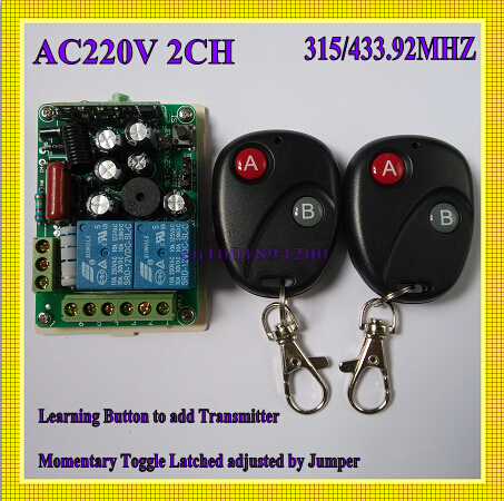 220V 2 Channel RF Wireless Remote Control Switch System Remote Lighting 315/433 1 Receiver 2 Transmitter Learning Code 2pcs receiver transmitters with 2 dual button remote control wireless remote control switch led light lamp remote on off system
