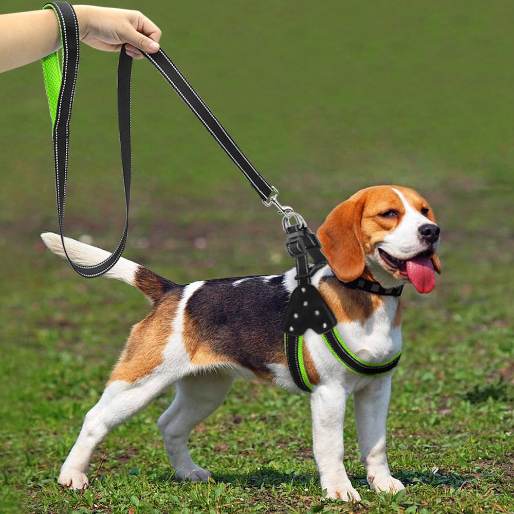 Reflective Dog Harnesses Leash Set