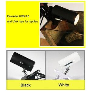 Image 5 - UVA+UVB 3.0 Reptile Lamp Kit with Clip on Ceramic Light Holder Digital Thermometer Hygrometer Turtle Tortoises Basking UV Lamp