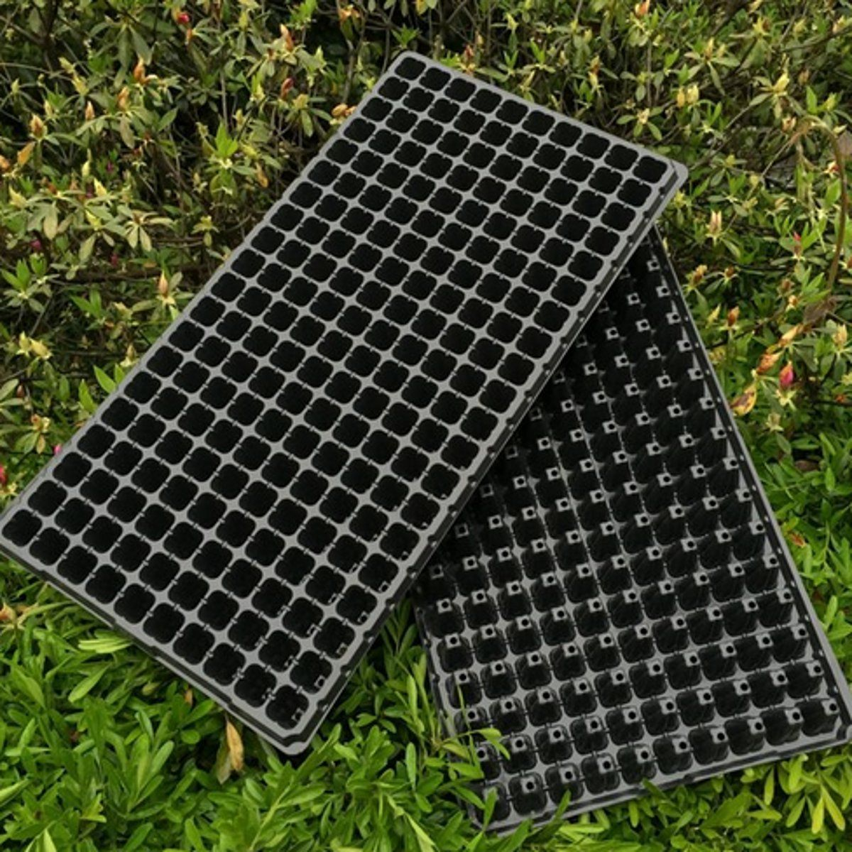 Seedling Starter Planting Tray Extra Strength Seed Germination Vegetable Plant Flower Pot Nursery Grow Box Propagation 200 Holes