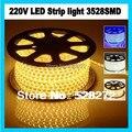 100m/lot 3528SMD white or warm white led strip light 220V+3pcs plug+10pcs clips+3pcs end caps,Waterproof (IP67)