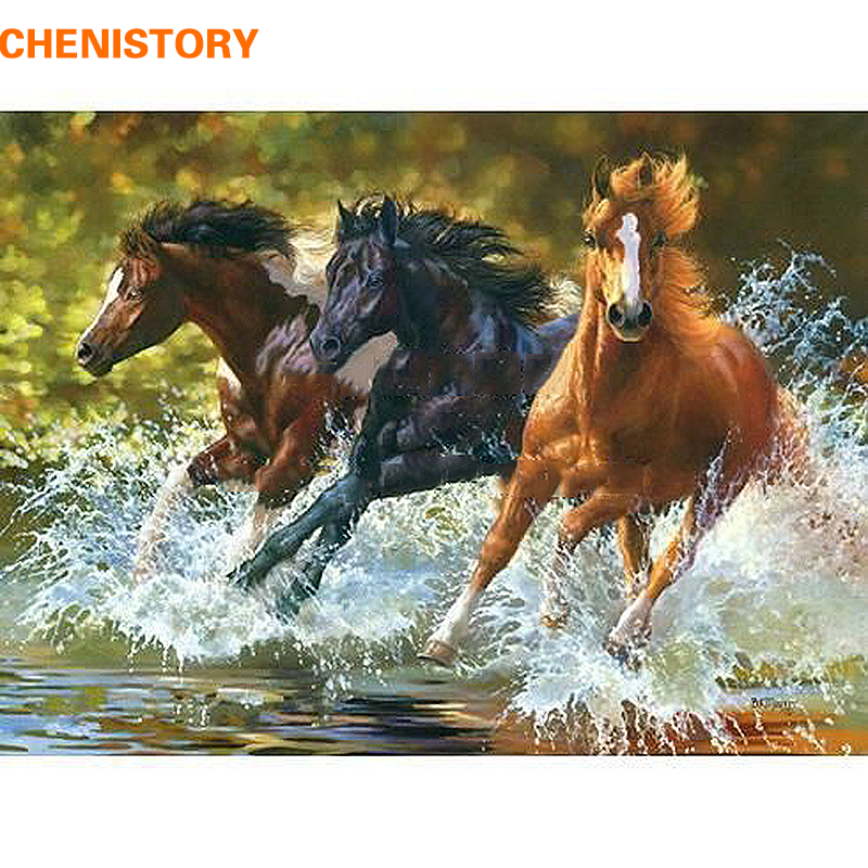 CHENISTORY Cavallo FAI DA TE Pittura A Olio Digitale Dai Corredi di Numeri Colorazione Pittura Dai Numeri Regalo Unico Per La Decorazione Domestica 40x50 cm