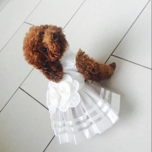 Kostumet e Nuseve Qeni Luksoze Princesha Qeni Qeni Dress Dasma Dress - Produkte për kafshet shtëpiake - Foto 4