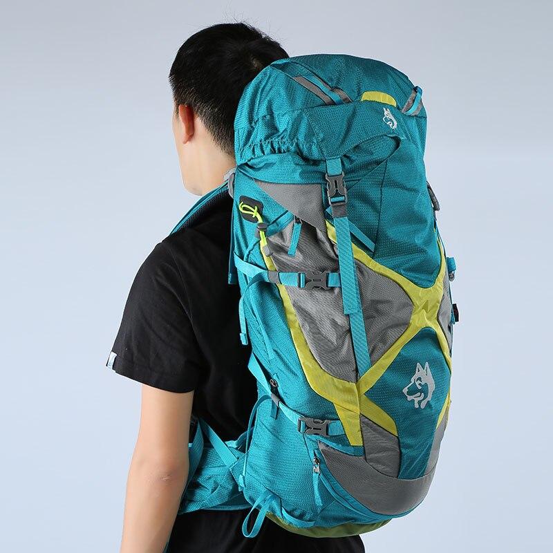 Sac à dos extérieur de haute qualité 65L randonnée sac à dos Molle sacs pour voyage touristique montagne Camping sacs à dos sac - 4