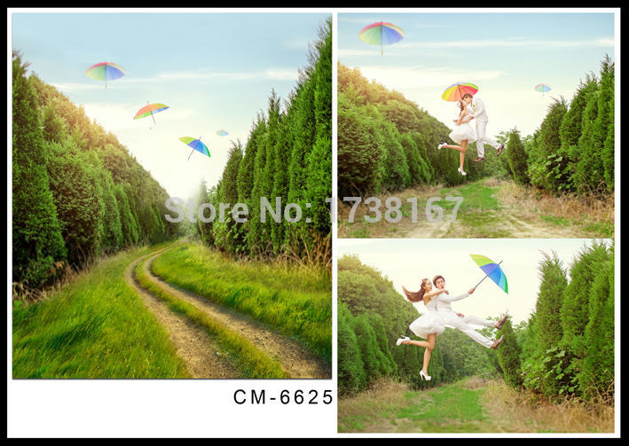 200cm*300cm Thin vinyl photography backdrops photo studio photographic background for children wedding hot sell and wall CM6625 role of women in agroforestry practices management