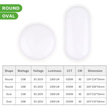 Modern Moisture-Proof Round/Oval LED Ceiling or Wall Lamp
