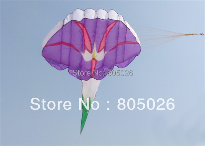 free shipping high quality soft ktes Morning Glory kite beautiful in sky hot sell child love with handle and line outdoor toys цена