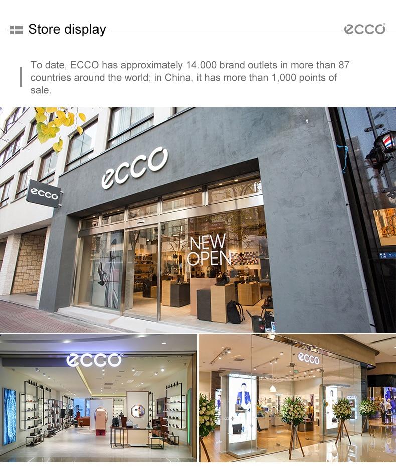 ecoo_06