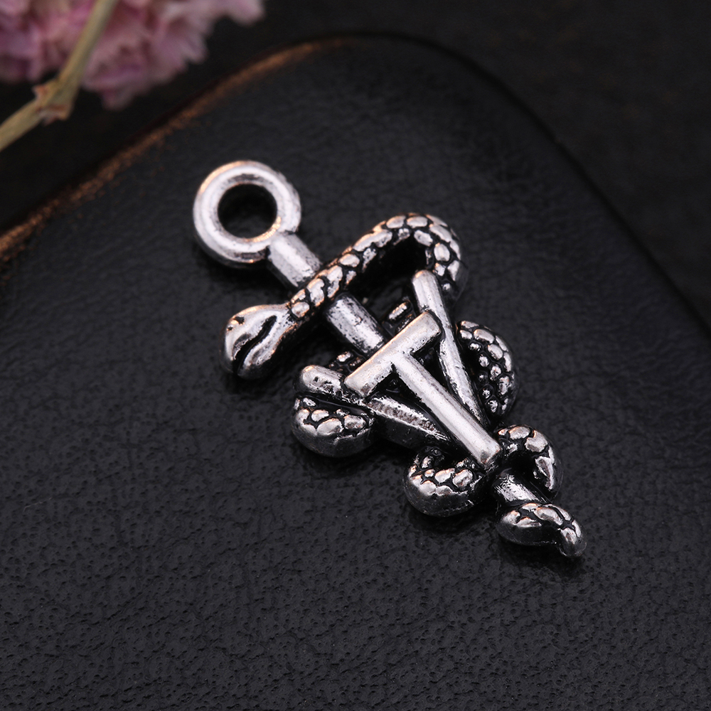 US $3 0  Skyrim Cool Jewelry Accessories Snake Folating Charm Fit DIY  Necklace&Bracelet Handmade Jewelry making Medical Logo Charms 20pcs-in  Charms