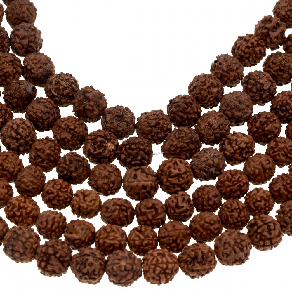 Tibetan 108 Shiva Yoga Brown Natural Rudraksha Seeds Mala Prayer Beads tibetan yoga of movement
