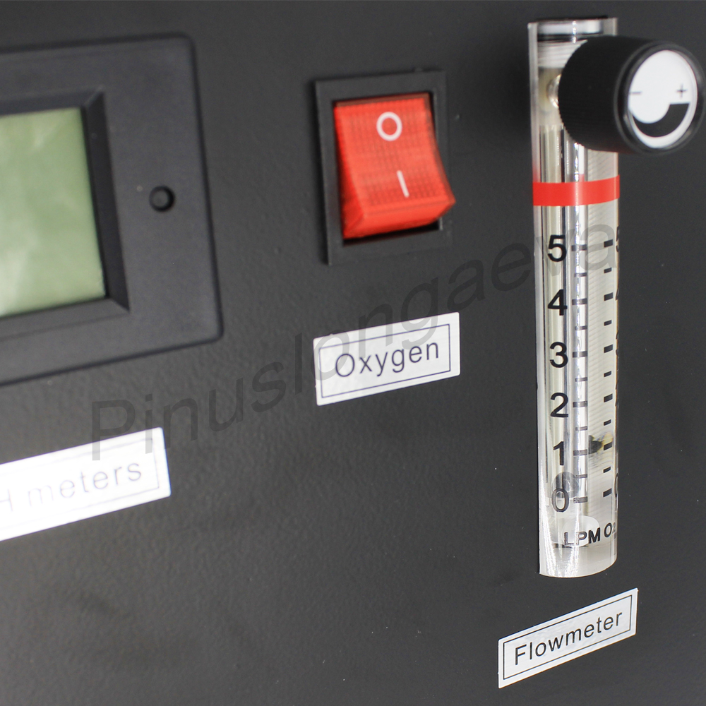 Pinuslongaeva 3L 5L 10L 15L 20L 30L 96% Sauerstoff generator maschine belüfter Belüftung gerät sauerstoff gas pumpe Mit luft kompressor