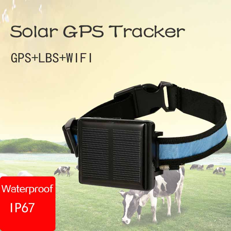 RF-V26 Waterproof IP66 Mini Solar Sheep Cow  Cattle Animal Long Standby Time Gps Tracker  Lifetime Free Use Platfrom Support App