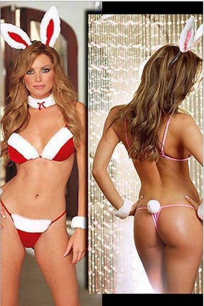 Bikini-Bunny-Leopard-Cat-Ladies-Lingerie-Ssexy-Uniforms-Halloween-Christmas-Party-Cosplay-Costumes.jpg